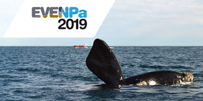 NEGOCIOS, NATURALEZA Y EXQUISITA GASTRONOMIA INTEGRADA EN EVENPa 2019